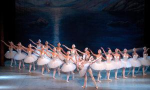 El Lago de los Cisnes @ Teatro Auditorio de Roquetas, Avda Reino de España s/n | Roquetas de Mar | Andalucía | España