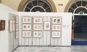 Bartolomé Marín 'Pinturas, dibujos y caricaturas' @ Diputación Provincial, C/ Navarro Rodrigo, | Almería | Andalucía | España