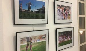 'Rugby, abriendo caminos' @ Centro de Interpretación Patrimonial, Plaza Vieja s/n. | Almería | Andalucía | España